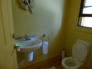 The orignal kids toilet