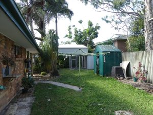 Tewantin Back Exterior - original backyard