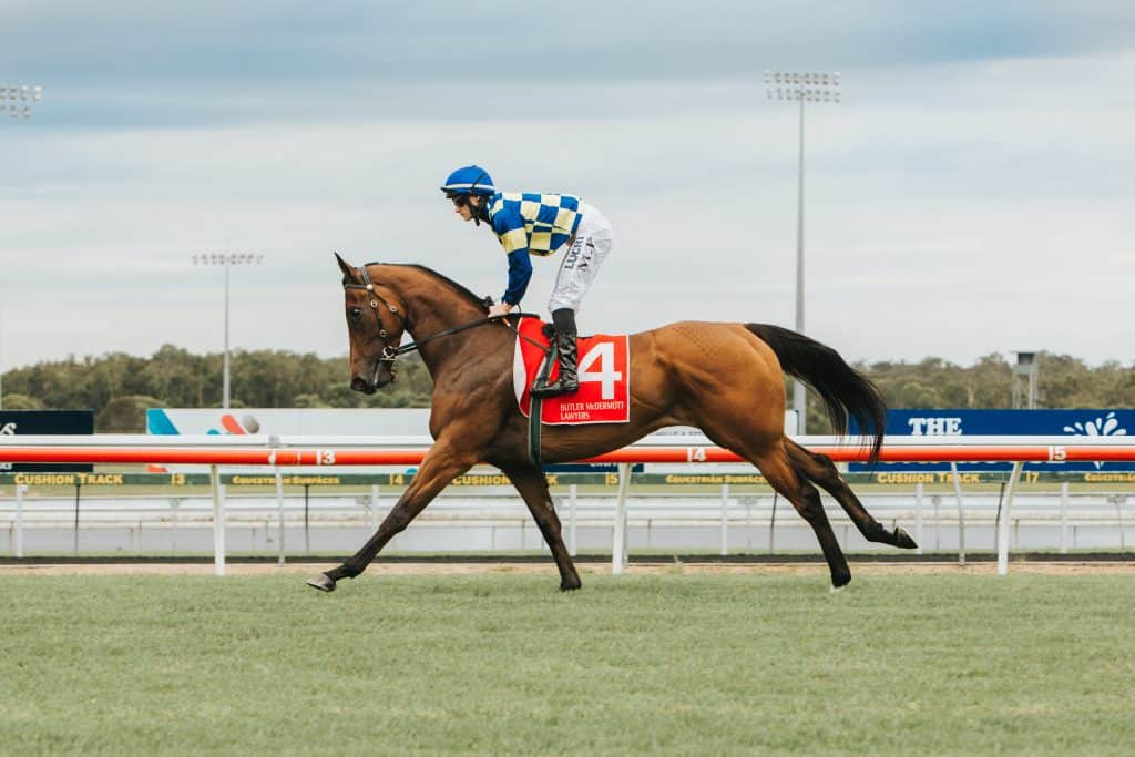 Race Weekend at the Sunshine Coast Turf Club - horse racing